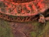 Z_DH_Hydrant_8634_HDR
